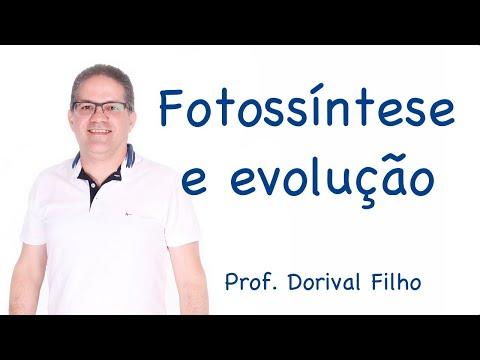 Fotossíntese e Evolução da vida