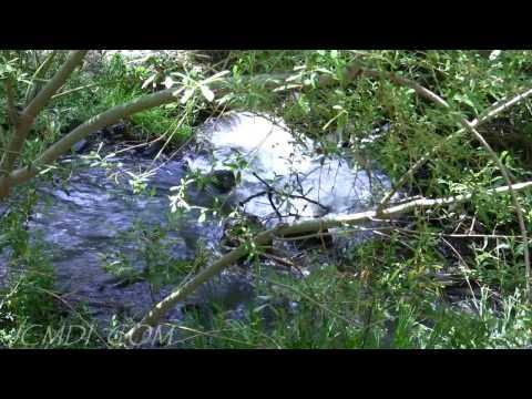 Rushing Waters 720p HD
