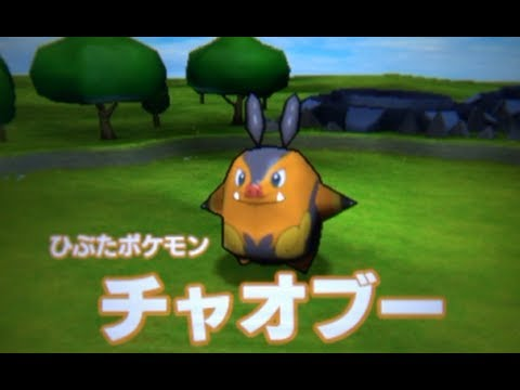 Pokemon Rumble Blast Walkthrough 02 - Big Brother Pignite