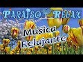 FLORES RELAJANTES, LA MEJOR MUSICA RELAX, THE BEST RELAX MUSIC, RELAXING, RALAXATION