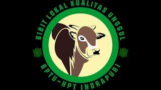 Profil BPTU-HPT Indrapuri