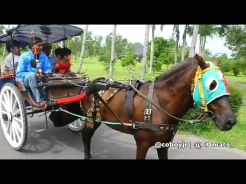Coboy Jr. Special Behind The Stage - Magelang Trip Part 2