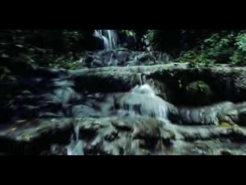 """Reserva de la Biosfera """"El Triunfo"""""""