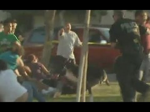 WTF News - Anaheim Police Shoot At Women And Children, Unleash K-9 Attack Dog
