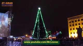 На День святого Николая в Житомире зажгли Новогоднюю ёлку