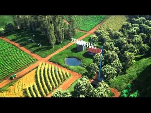Projeto Biomas