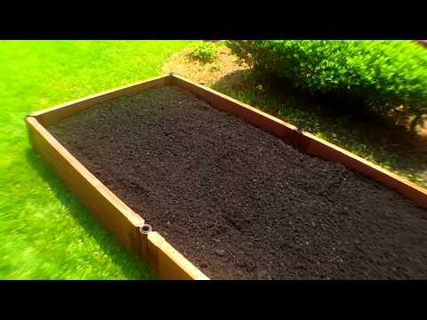 Raised Bed Organic Vegetable Gardening Planting With Deep Soil: Summer Gardens