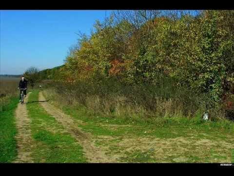 VIDEOCLIP Traseu MTB Padurea Caldarusani, 30 km pe biciclete
