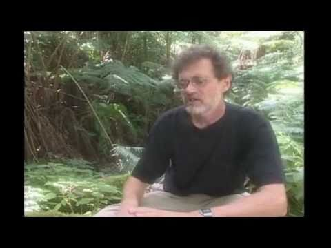 2/5 Novelty, i Ching and DNA -Terence McKenna