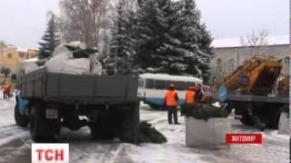 В Житомире не нашли применения «елки-конуса», подаренной Киевом еще в прошлом год