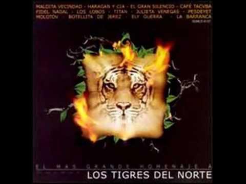 6.  - La Puerta Negra - Fidel Nadal  (El Mas Grande Homenaje A Los Tigres Del Norte)