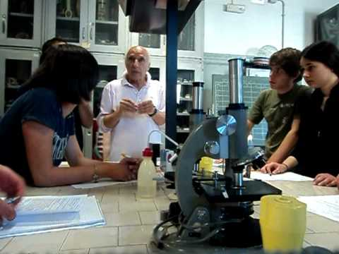 Esperimento di Chimica part.1°