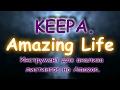 Keepa.Инструмент для анализа листингов на Amazon. | Amazing life.