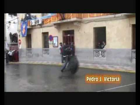 Trailer |SOLOTOROS|