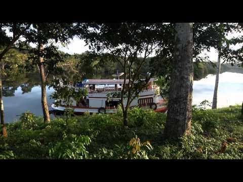 Proteger los bosques, combatiendo el cambio climático: en busca de lecciones en el Amazonas