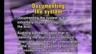 Lecture 17 (ACC311 – Fundamentals of Auditing)