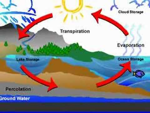 COOL water cycle song      - YouTube
