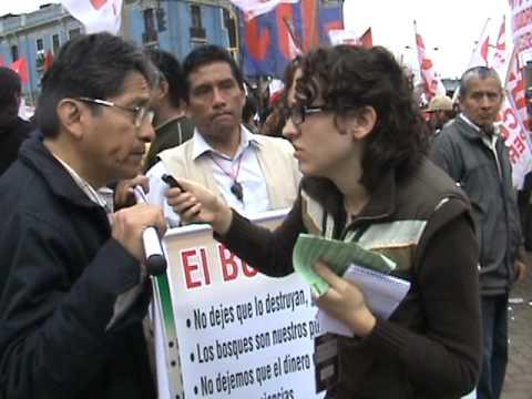 No a la deforestacion en el Peru