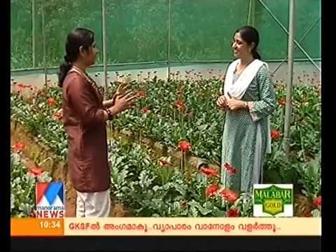 Manorama Vanitha - Interview with Maria Biju (Leaves & Petals) Part 1