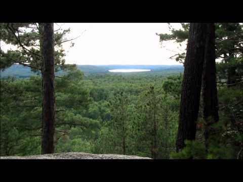 Beautiful Natural Forest and Nature Sounds [HD] - Relaxation Video 1080p