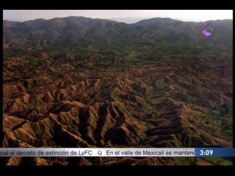 """""""Greenpeace pide que México cumpla con deforestación"""" EfektoTV Noticias presenta:"""