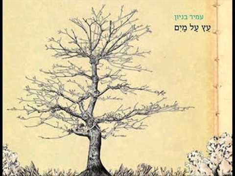 עמיר בניון שיר מולדת Amir Benayoun