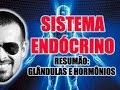 Vídeo Aula 034 - Resumão do Sistema Endócrino, das Glândulas Endócrinas e dos Hormônios