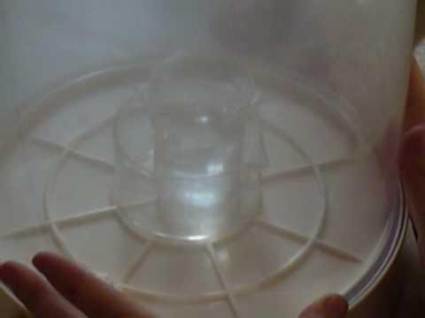 Ebollizione dell'acqua con pressione dell'aria ridotta