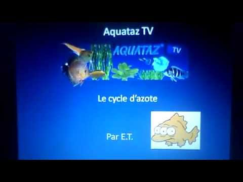 Aquataz TV-Le cycle d'azote