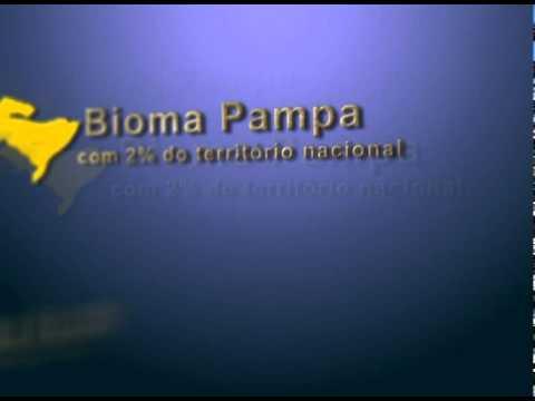 o que é um Bioma?