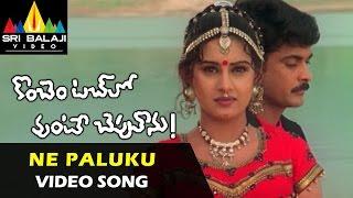 Ne Paluku Video Song | Konchem Touchlo Vunte Cheputanu
