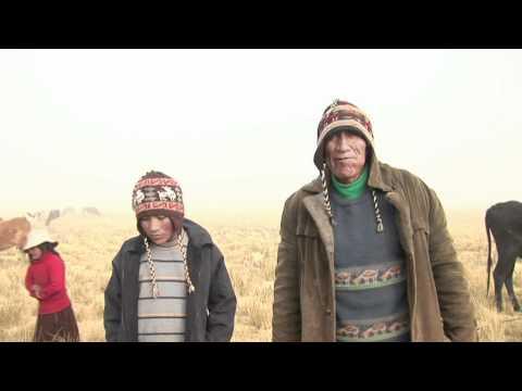 En Bolivia, trabajo infantil es la cruda realidad