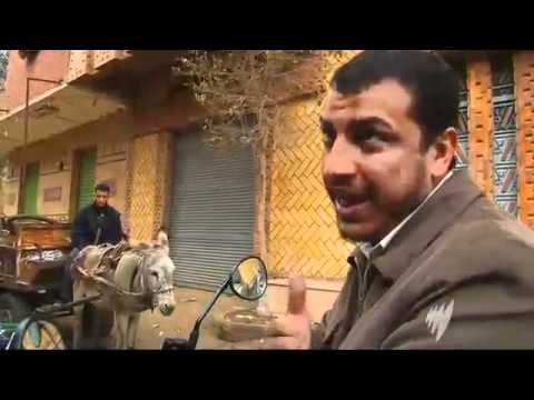 SBS News  Egypt_s tourism suffers from protests - 08/02/2011