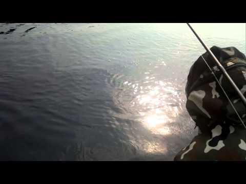 нюя рыбалка