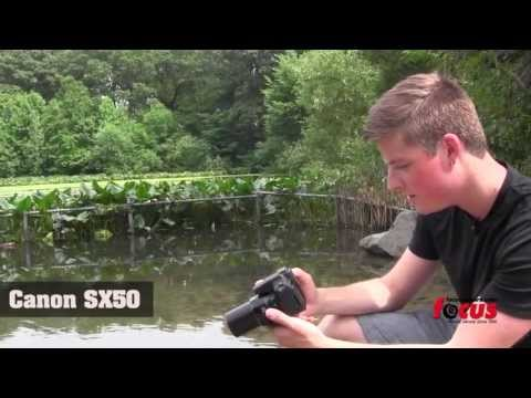 Canon Sx50, Sony HX300, and Nikon P520 Comparison