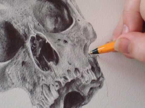 Stop Motion Drawing 2:  Sugar Skull by Paul Alexander Thornton