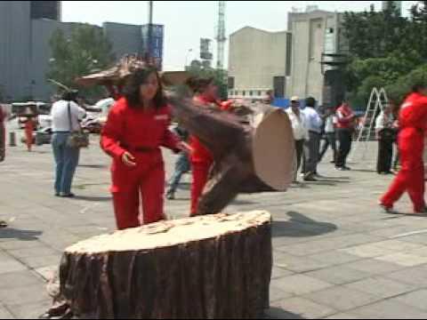 Deforestación = Cambio Climático