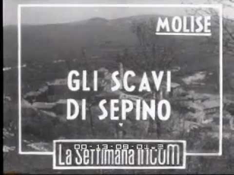 Sepino (CB). Gli scavi del 1949