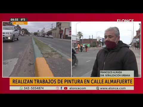 Pintaron los canteros de avenida Almafuerte: El motivo del color elegido