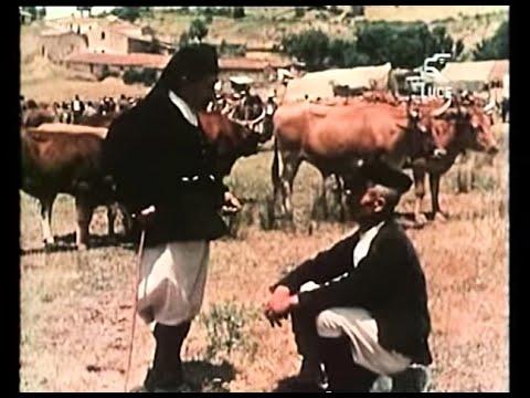 Aspetti Della Sardegna N° 6 - Feste della Barbagia / 1955 [Delta Film]