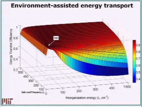 Optimal and Robust Energy Transfer in Light Harvesting Complexes (Google Wkshop on Quantum Biology)