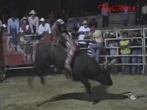 Buena Monta De:El Bad Boy De Jalisco vs El Enterador