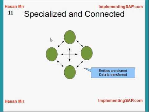 Introduction to SAP ERP.wmv