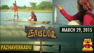 Naadodi 29-03-2015 Thanthitv Show | Watch Thanthi Tv Naadodi Show March 29, 2015