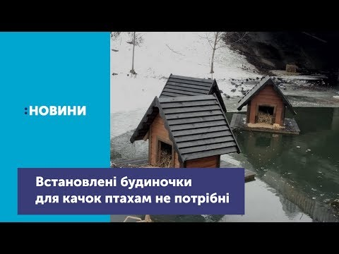 У Чернігові витратили 30 тисяч на непотрібні птахам плавучі будиночки на Стрижні. ВІДЕО