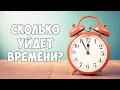 Сколько времени нужно чтобы стать программистом?
