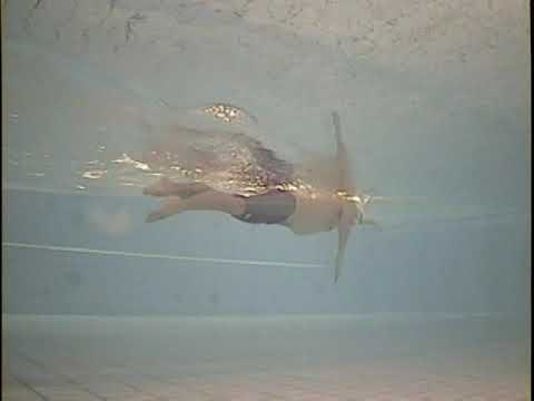 Total Immersion Swimming Freestyle Demo by Shinji Takeuchi