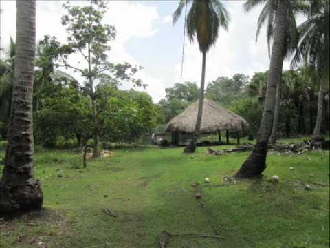 ISLA LA CONCEPCION, reserva biosfera de la Encrucijada (Acapetahua y Huixtla, Chiapas). wmv