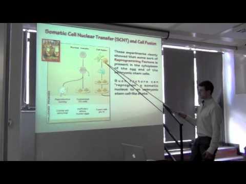 Le nuove frontiere della medicina reginerativa: nanotecnologie e iPS #2
