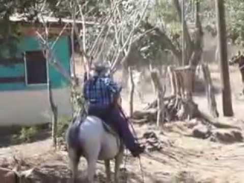 Programa 236 Arreo y montadera de toros Pozo de Agua Nicoya 2015
